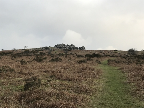 Short Winter Walk to Pew Tor