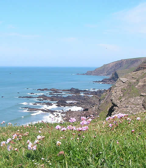 The South West coast path meanders through stunning scenery
